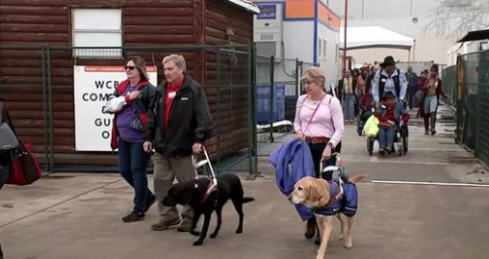 Image of several attendees with guide dogs and one wheelchair user along with a volunteer (both wearing black cowboy hats).